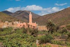 一片绿洲的清真寺在摩洛哥 免版税库存图片