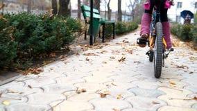 一白种人儿童乘驾在秋天公园骑自行车路 女孩骑马黑色橙色周期在公园 股票录像
