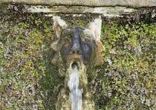 一百个喷泉的面具在别墅d ` Este的 库存图片