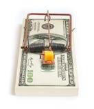 一百美元捕鼠器 免版税库存图片