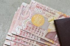 一百美元新西兰的钞票 免版税库存图片