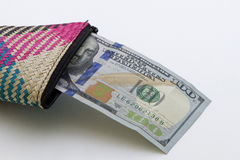 一百美国美元 库存图片