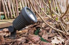 一盏小现代LED庭院灯,在花圃的地面投入了 免版税库存照片