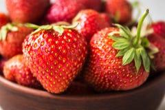 一碗新鲜的草莓 免版税库存图片