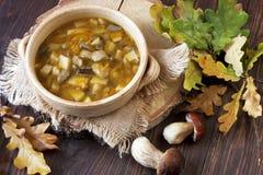 一碗新鲜的蘑菇汤 免版税库存照片