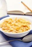 一碗玉米片用牛奶 免版税库存照片