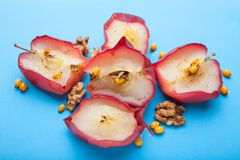 一种健康生活方式的饮食从被烘烤的红色苹果的在蓝色背景 免版税库存图片