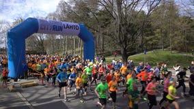 一种健康生活方式的许多爱好者跑城市马拉松 赛跑起始时间 股票录像