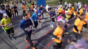 一种健康生活方式的许多爱好者跑城市马拉松 赛跑起始时间 影视素材