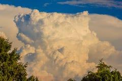 一种原始的花椰菜型云彩形成 库存照片