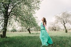 一种好心情的可爱的女孩在春天在一个开花的苹果的或 免版税库存图片