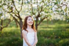 一美丽的少女的画象有蓝眼睛的在白色礼服在有blosoming在日落的苹果树的庭院里 免版税库存照片