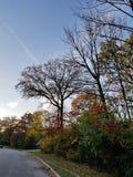 一美好的秋天天在威斯康辛 库存图片