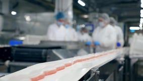 一致的人们与在食物工厂的一台传动机一起使用 股票录像