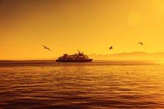 一艘渡轮的剪影在日落的和海鸥飞行  是 免版税库存照片