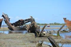 一艘老木船的遗骸 库存照片