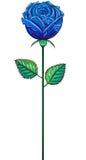 一蓝色芽在词根上升了 免版税库存照片