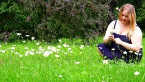一蓝色sarafan的一个女孩收集野花坐绿草 股票录像