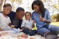 一起享受夏天野餐的家庭在公园 库存照片
