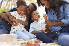 一起享受夏天野餐的家庭在公园 库存图片