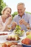 一起享受室外膳食的资深夫妇 免版税库存图片