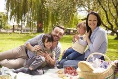 一起享受河沿野餐的家庭 库存照片