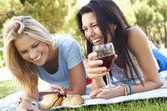 一起享受野餐的两个女性朋友 图库摄影