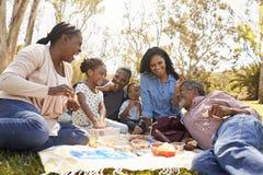 一起享受野餐的多一代家庭在公园 免版税库存照片