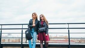 一起俏丽的妇女夫妇在都市风景 屋顶的两个快乐的美丽的女孩 美好的城市视图 库存图片