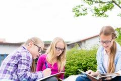 一起做学校的学生家庭作业 免版税图库摄影