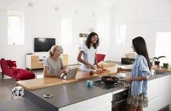 一起准备膳食的三个女性朋友在现代厨房里 库存照片