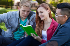 一起学会不同的学生 免版税库存图片