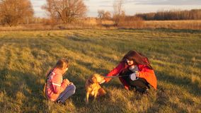 一起抚摸狗和笑的女孩少年和妈妈 股票视频
