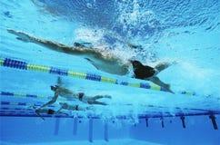 一起游泳在线的游泳者在种族期间 免版税库存图片