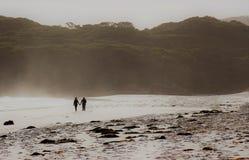 一起漫步在海滩 免版税库存图片