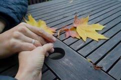 一起现有量 对一个朋友的一个帮手在与槭树的秋天背景粗砺的桌上离开 免版税库存图片