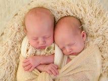 一起睡觉同卵双生的婴孩 免版税库存照片