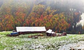 一起秋天和冬天 免版税图库摄影