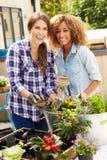 一起种植屋顶庭院的两个女性朋友 免版税图库摄影