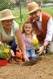 一起种植的花 免版税库存照片
