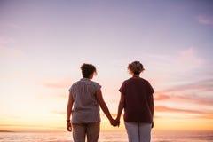 一起观看五颜六色的日落的富感情的年轻女同性恋的夫妇 免版税库存照片
