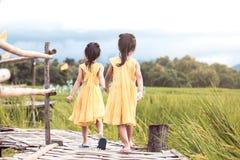 一起走后面观点的两个的小女孩握手和 免版税库存照片