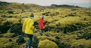 一起走在熔岩荒野的两妇女的鸟瞰图在冰岛 游人接触青苔爆沸 股票录像
