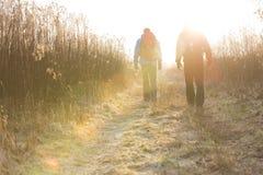 一起走在领域的男性远足者全长背面图  免版税库存图片