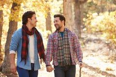 一起走通过秋天森林地的快乐男性夫妇 免版税库存图片