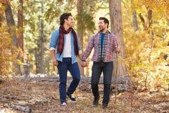 一起走通过秋天森林地的快乐男性夫妇 免版税图库摄影