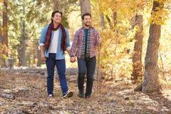 一起走通过秋天森林地的快乐男性夫妇 免版税库存照片