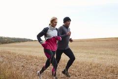 一起跑在秋天领域附近的成熟夫妇 库存图片