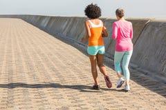 一起跑步两名运动的妇女背面图  免版税库存照片
