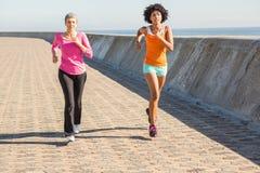 一起跑步两名运动的妇女 库存照片